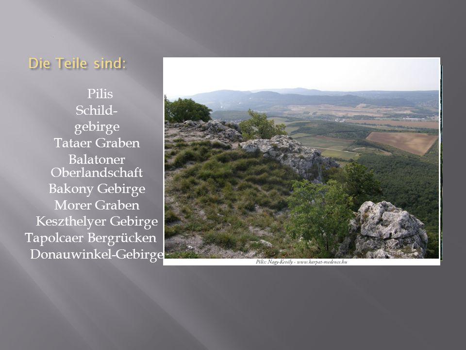 Die Teile sind: Pilis Schild- gebirge Tataer Graben Balatoner Oberlandschaft Bakony Gebirge Morer Graben Keszthelyer Gebirge Tapolcaer Bergrücken Donauwinkel-Gebirge