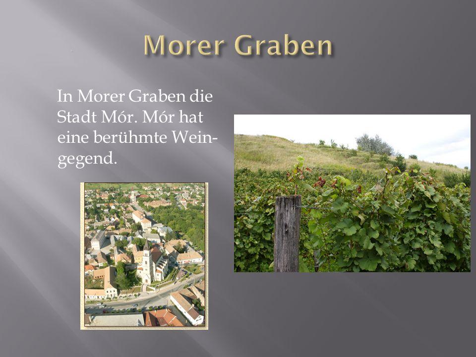 In Morer Graben die Stadt Mór. Mór hat eine berühmte Wein- gegend.