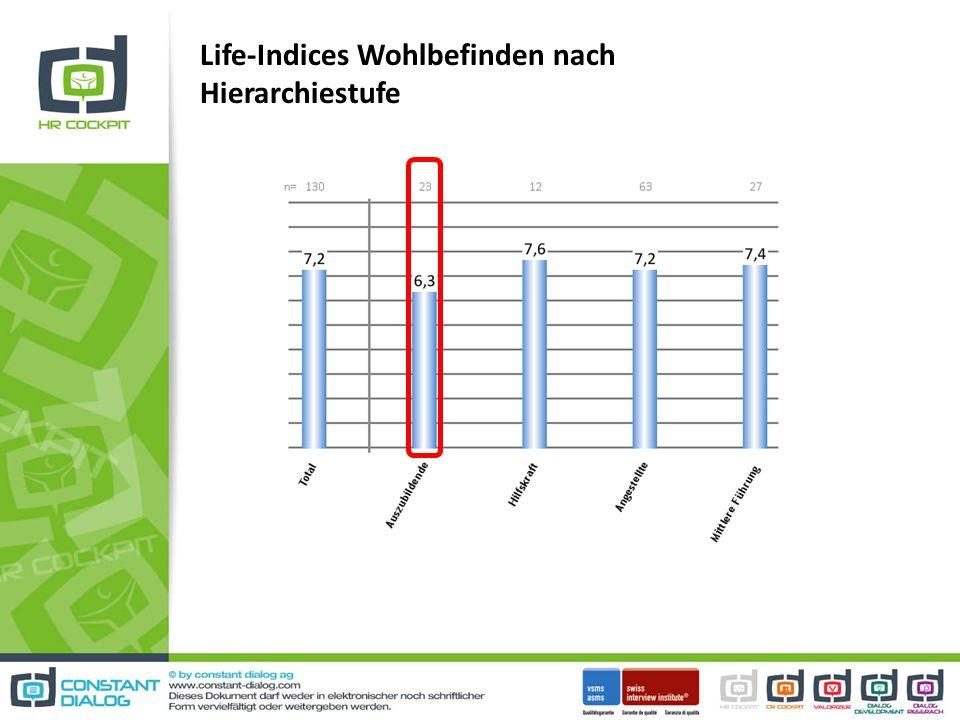 Life-Indices Wohlbefinden nach Hierarchiestufe
