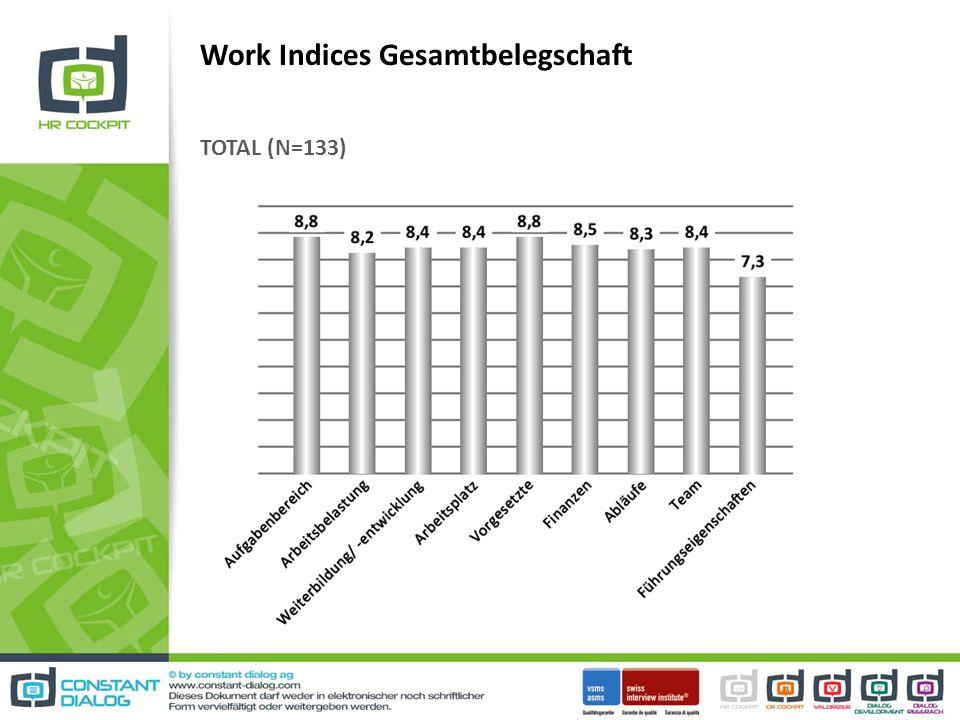 Work Indices Gesamtbelegschaft TOTAL (N=133)