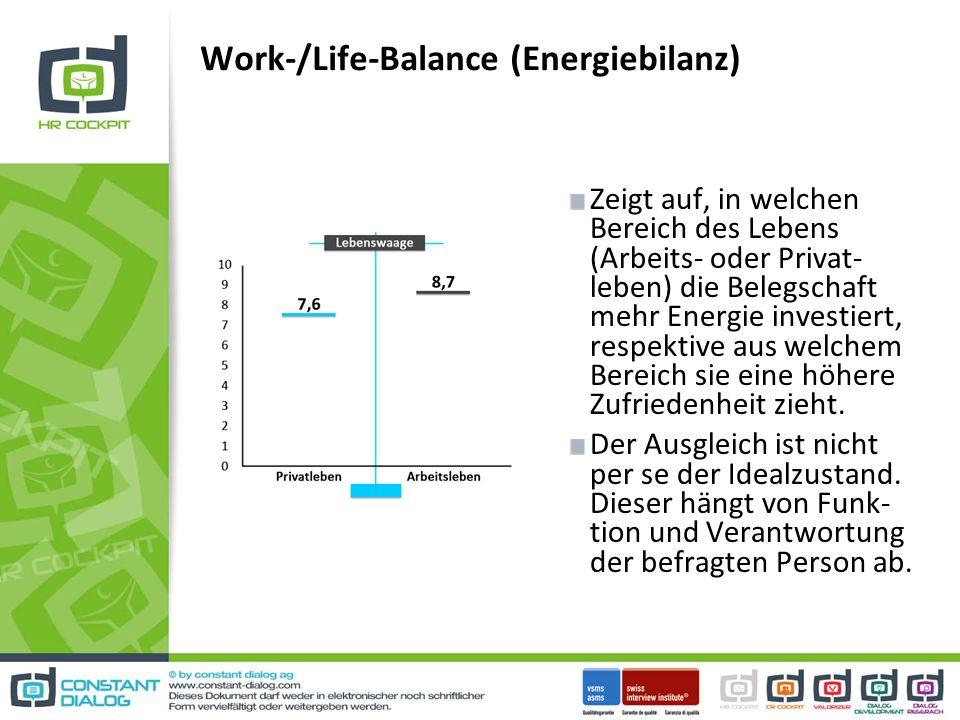 Work-/Life-Balance (Energiebilanz) Zeigt auf, in welchen Bereich des Lebens (Arbeits- oder Privat- leben) die Belegschaft mehr Energie investiert, respektive aus welchem Bereich sie eine höhere Zufriedenheit zieht.