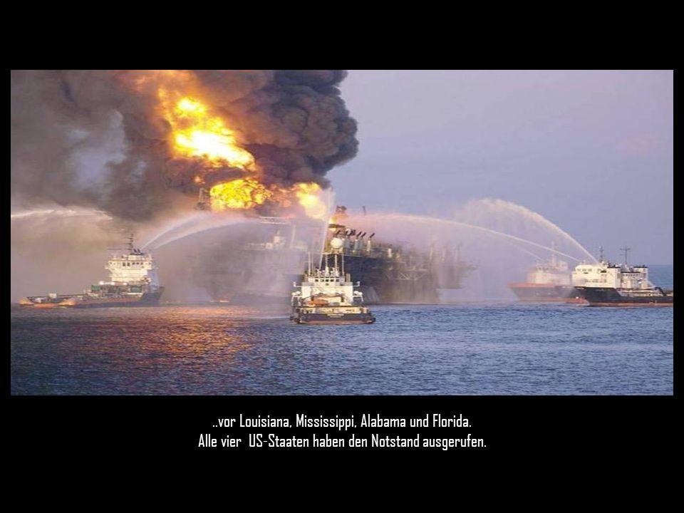 Seit am 22.April die Bohrinsel Deepwater Horizon explodierte und sank, sprudeln täglich mindestens 800.000 Liter Rohöl aus drei Lecks ins Meer…