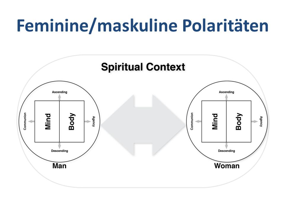 Feminine/maskuline Polaritäten
