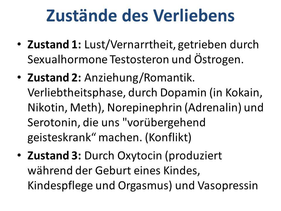 Zustand 1: Lust/Vernarrtheit, getrieben durch Sexualhormone Testosteron und Östrogen. Zustand 2: Anziehung/Romantik. Verliebtheitsphase, durch Dopamin