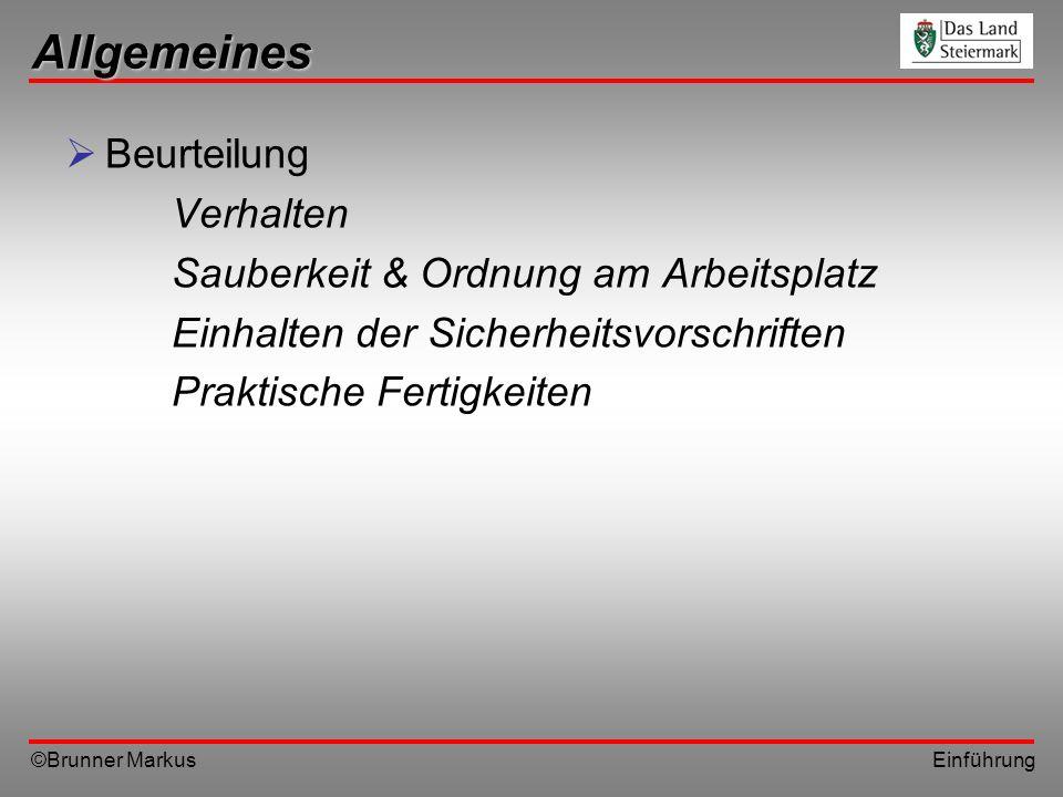 ©Brunner Markus Einführung Allgemeines Beurteilung Verhalten Sauberkeit & Ordnung am Arbeitsplatz Einhalten der Sicherheitsvorschriften Praktische Fer