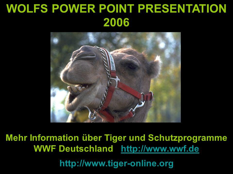 WOLFS POWER POINT PRESENTATION 2006 Mehr Information über Tiger und Schutzprogramme WWF Deutschland http://www.wwf.dehttp://www.wwf.de http://www.tiger-online.org