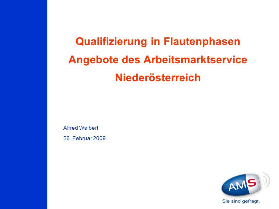 Qualifizierung in Flautenphasen Angebote des Arbeitsmarktservice Niederösterreich Alfred Walbert 26. Februar 2009