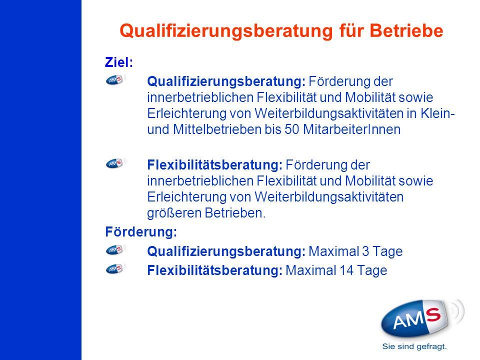 Qualifizierungsberatung für Betriebe Ziel: Qualifizierungsberatung: Förderung der innerbetrieblichen Flexibilität und Mobilität sowie Erleichterung vo