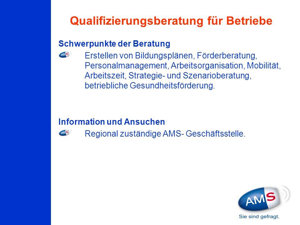 Qualifizierungsberatung für Betriebe Schwerpunkte der Beratung Erstellen von Bildungsplänen, Förderberatung, Personalmanagement, Arbeitsorganisation,