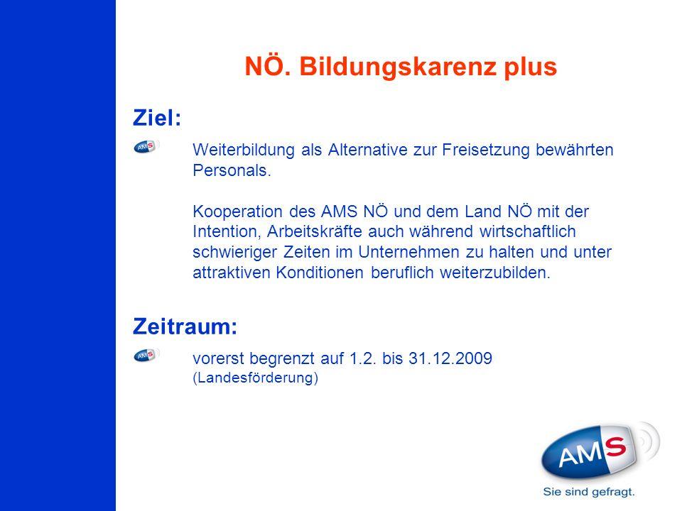 Ziel: Weiterbildung als Alternative zur Freisetzung bewährten Personals. Kooperation des AMS NÖ und dem Land NÖ mit der Intention, Arbeitskräfte auch