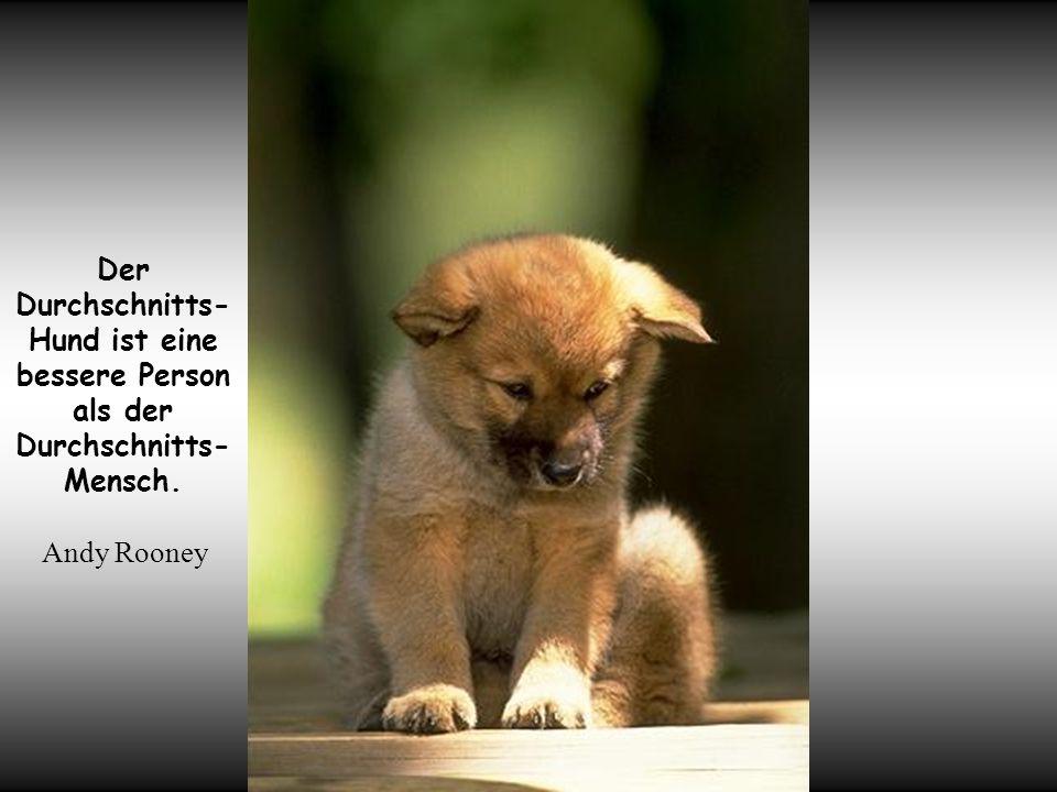 Der Durchschnitts- Hund ist eine bessere Person als der Durchschnitts- Mensch. Andy Rooney