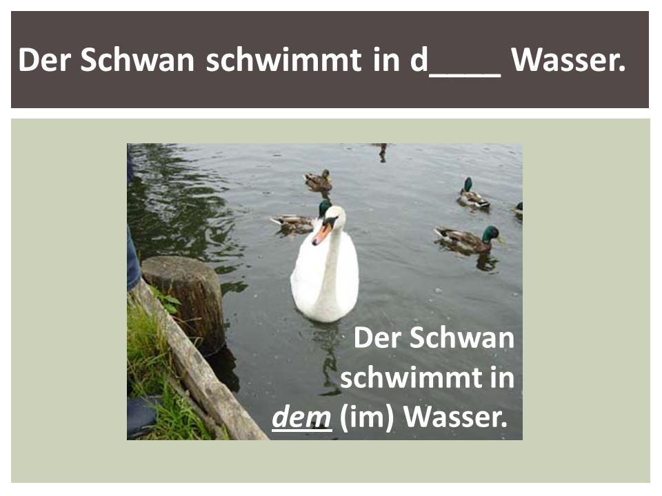 Der Schwan schwimmt in d____ Wasser. Der Schwan schwimmt in dem (im) Wasser.