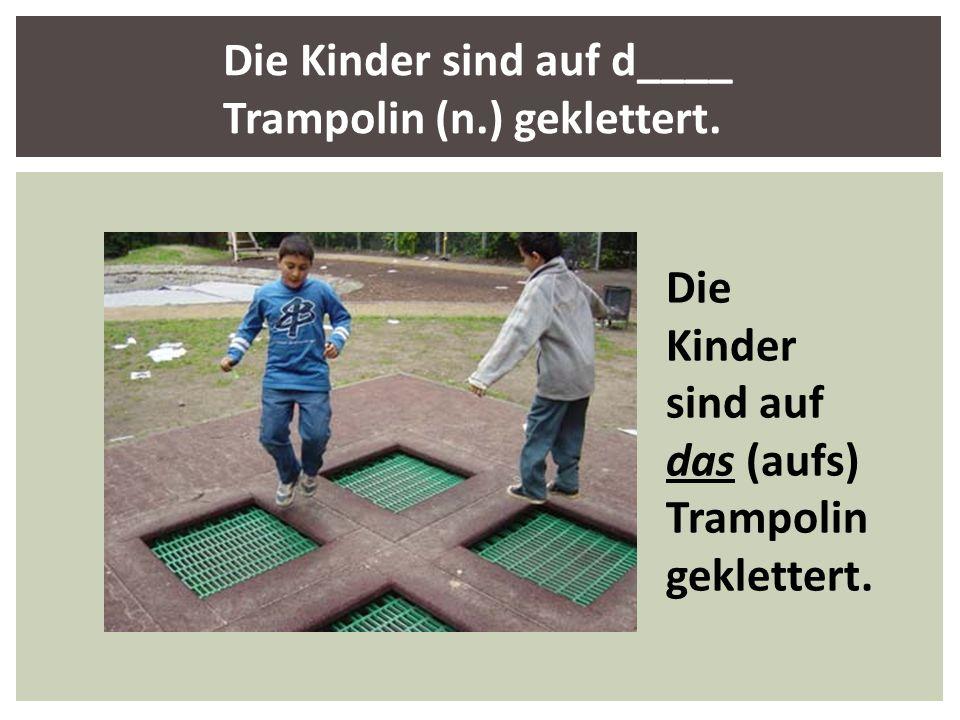 Die Kinder sind auf d____ Trampolin (n.) geklettert. Die Kinder sind auf das (aufs) Trampolin geklettert.