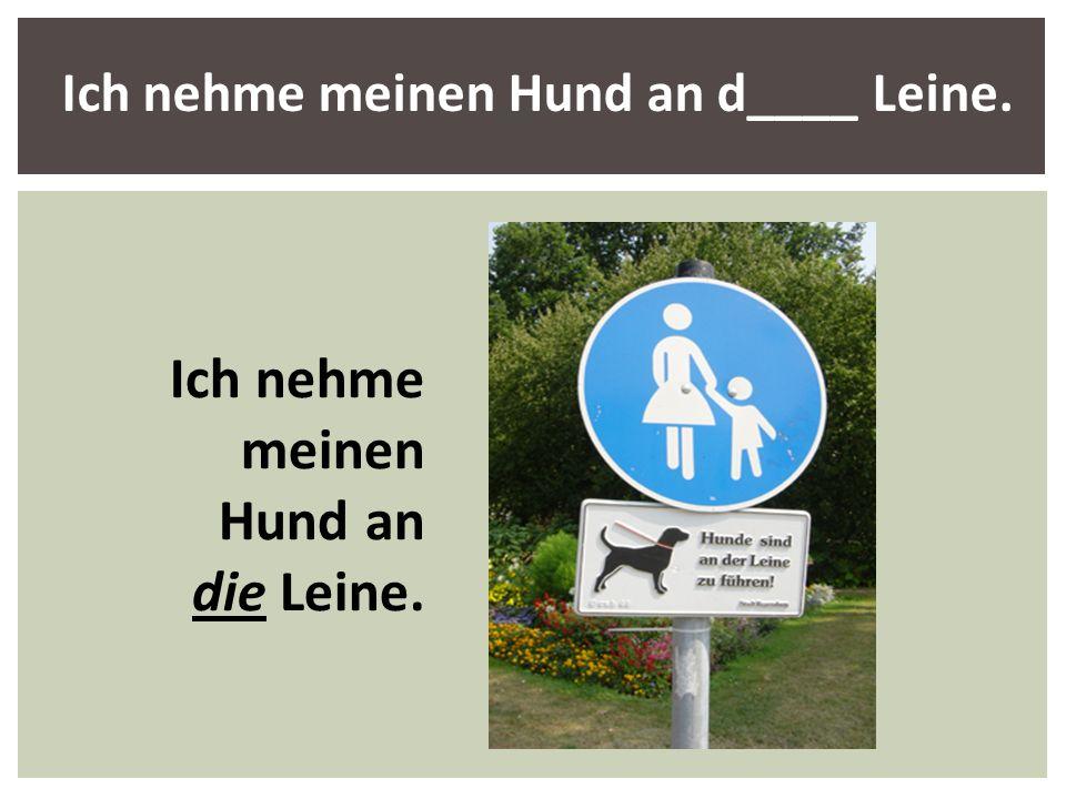 Ich nehme meinen Hund an d____ Leine. Ich nehme meinen Hund an die Leine.