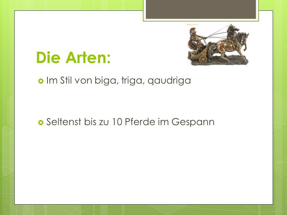 Die Arten: Im Stil von biga, triga, qaudriga Seltenst bis zu 10 Pferde im Gespann