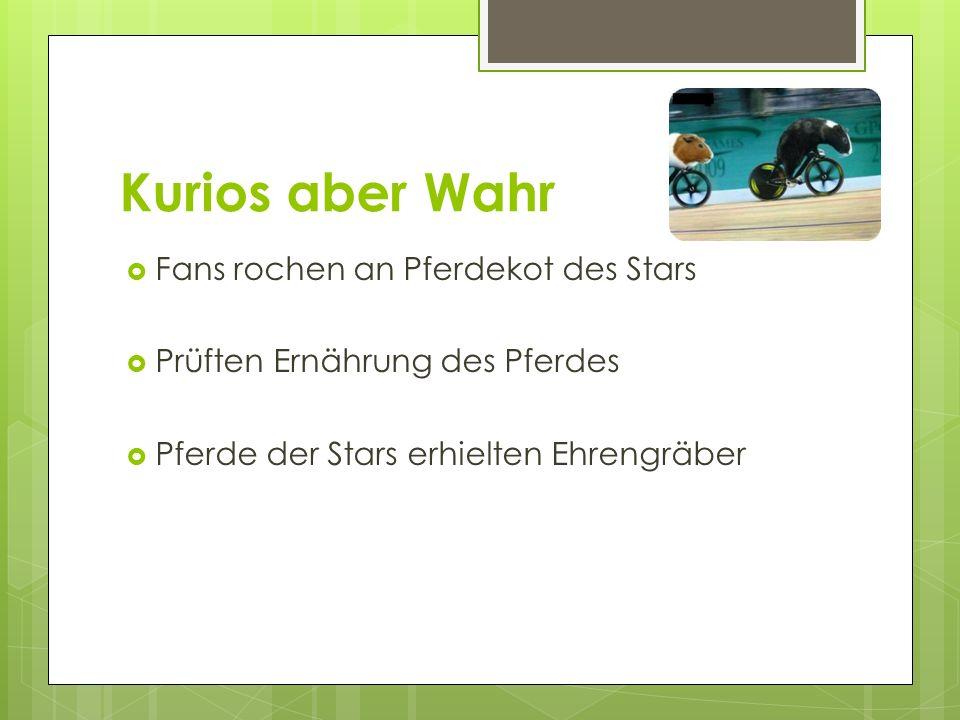 Kurios aber Wahr Fans rochen an Pferdekot des Stars Prüften Ernährung des Pferdes Pferde der Stars erhielten Ehrengräber