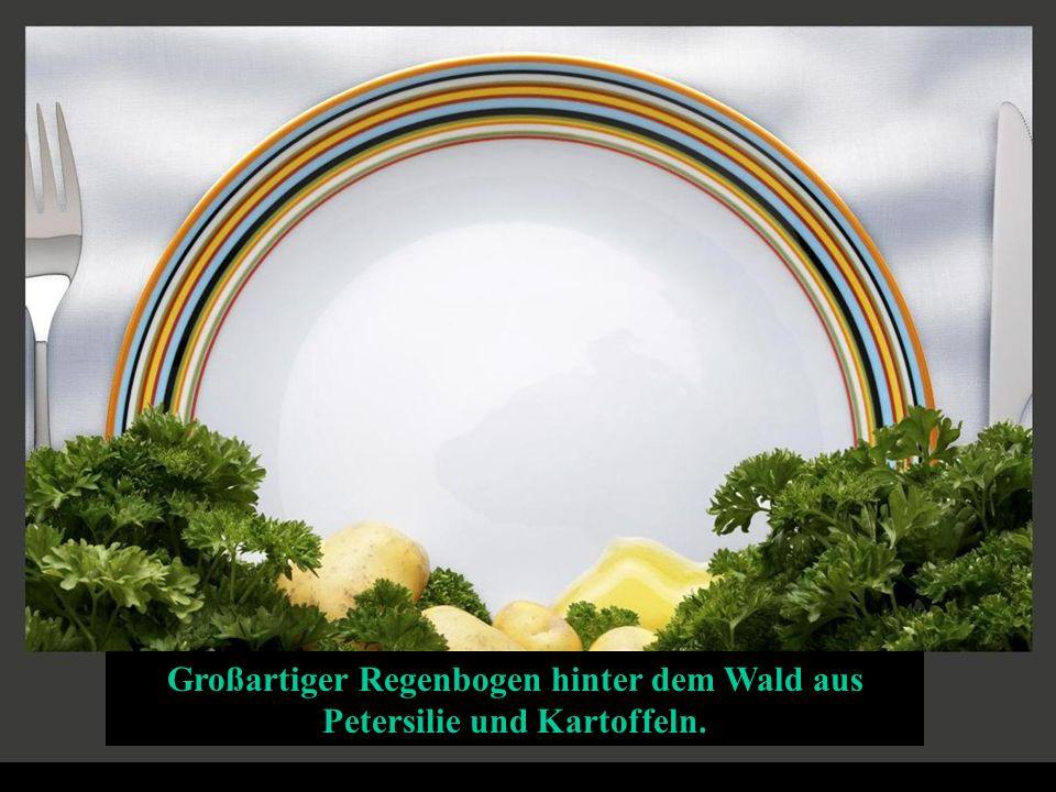 Großartiger Regenbogen hinter dem Wald aus Petersilie und Kartoffeln.