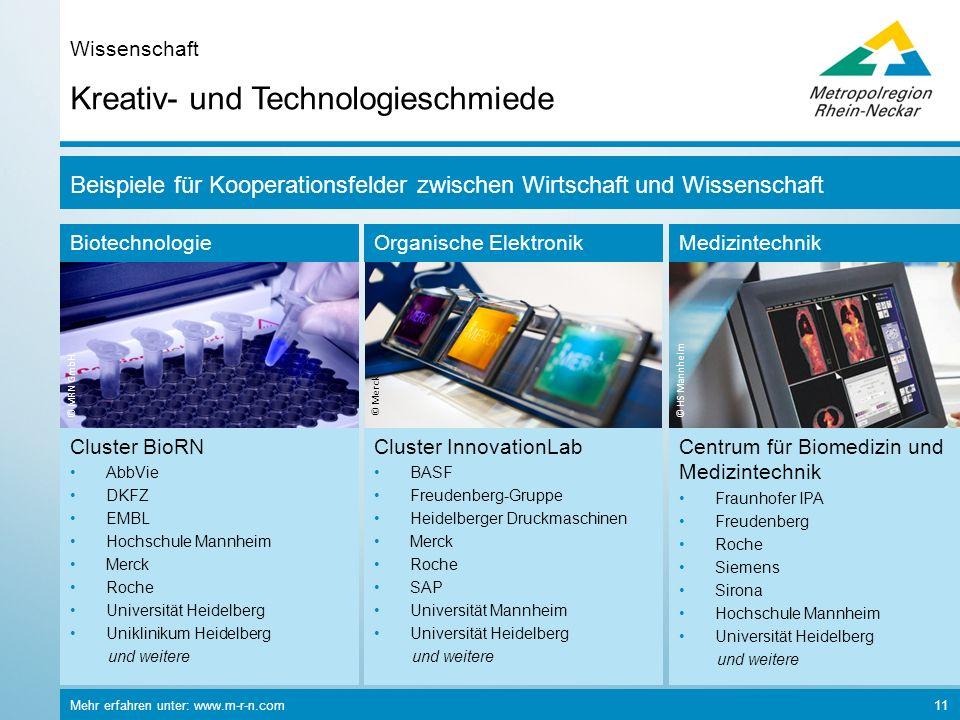 Mehr erfahren unter: www.m-r-n.com 11 Kreativ- und Technologieschmiede Wissenschaft Biotechnologie © MRN GmbH Organische Elektronik © Merck Medizintec