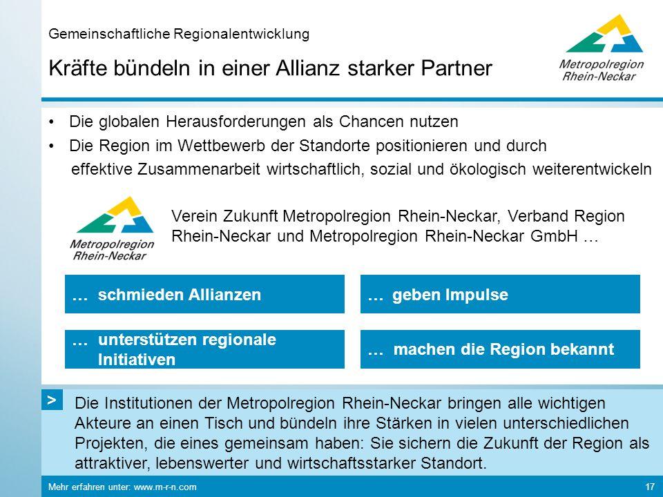Die Institutionen der Metropolregion Rhein-Neckar bringen alle wichtigen Akteure an einen Tisch und bündeln ihre Stärken in vielen unterschiedlichen P