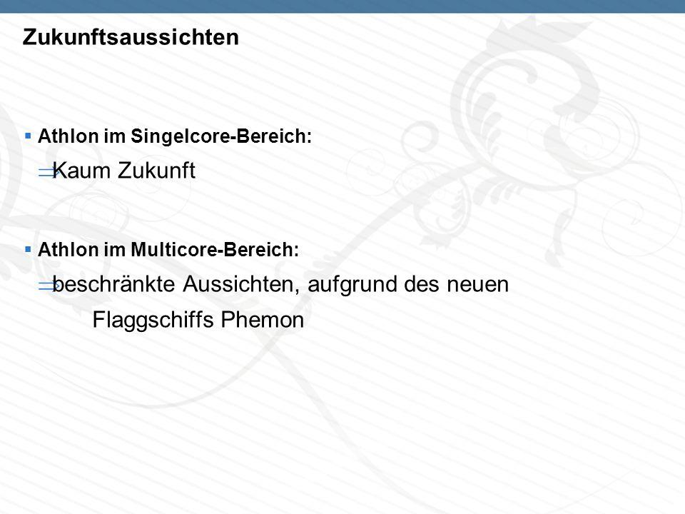 Zukunftsaussichten Athlon im Singelcore-Bereich: Kaum Zukunft Athlon im Multicore-Bereich: beschränkte Aussichten, aufgrund des neuen Flaggschiffs Phemon