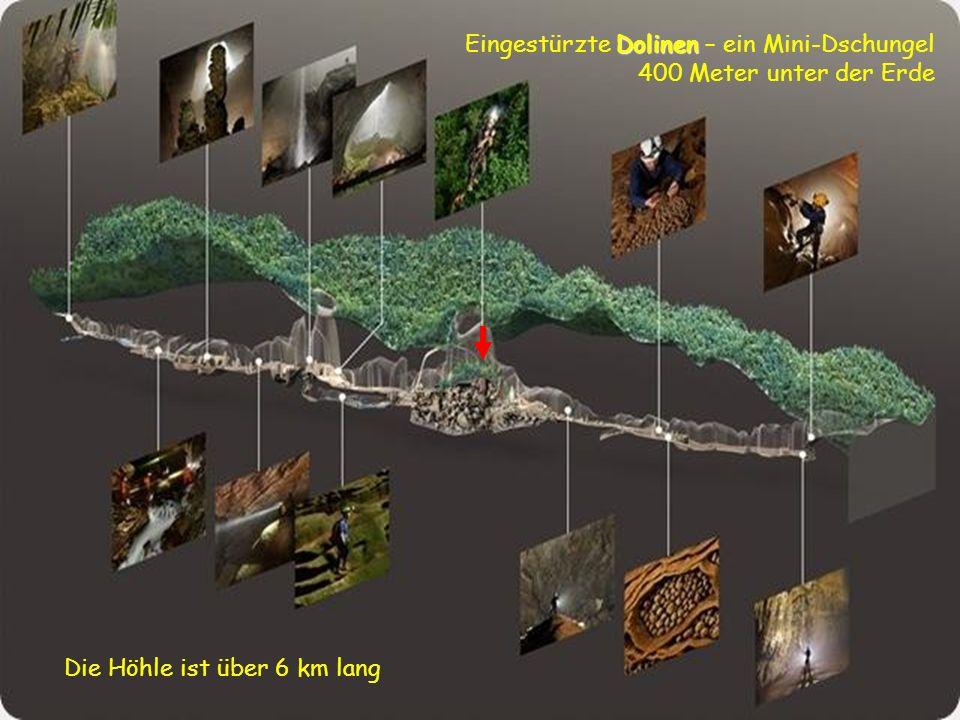 Die Höhle wurde nie zuvor von jemandem betreten, auch nicht von den Eingeborenen, weil der Eingang, der für vietnamesische Höhlenverhältnisse relativ