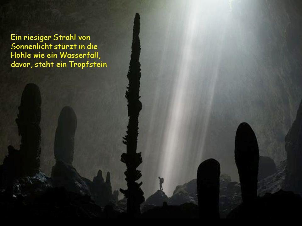 Die Höhle ist über 6 km lang Eingestürzte D DD Dolinen – ein Mini-Dschungel 400 Meter unter der Erde