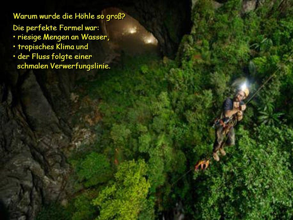 Deer Cave Bei einem Maß von 200 m Höhe und 150 m Breite, ist diese neue Höhle fast doppelt so groß ist wie der aktuelle Rekordhalter, die Deer Cave in