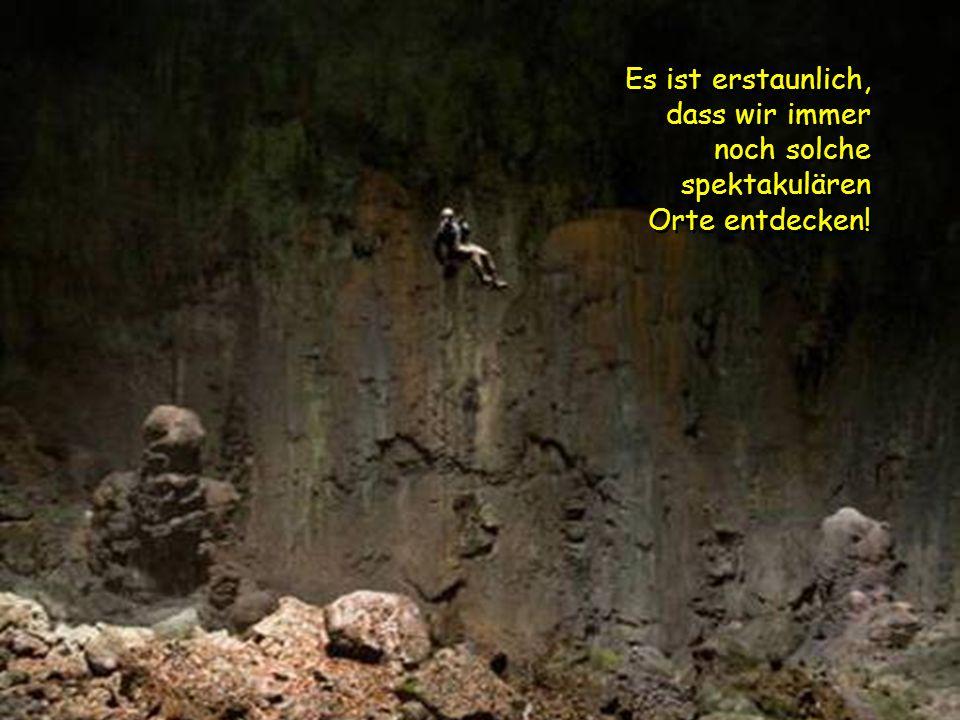 Doline Die eingestürzte Doline – ein Mini-Dschungel 400 m unter der Erde. Die eingestürzte D DD Doline – ein Mini-Dschungel 400 m unter der Erde.