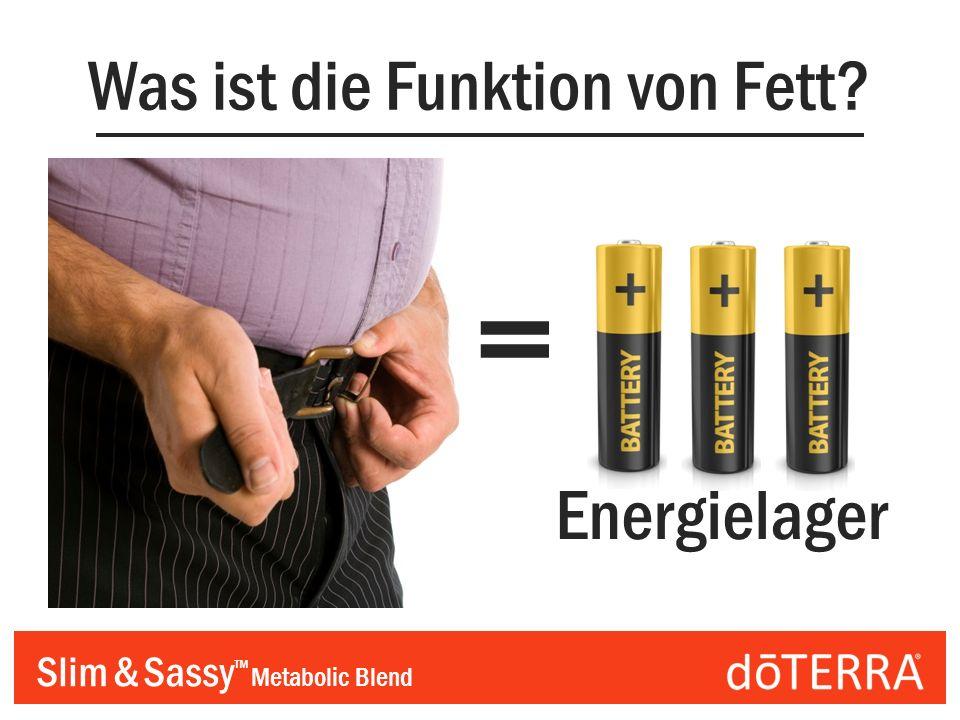 Slim & Sassy Metabolic Blend Was ist die Funktion von Fett? = Energielager