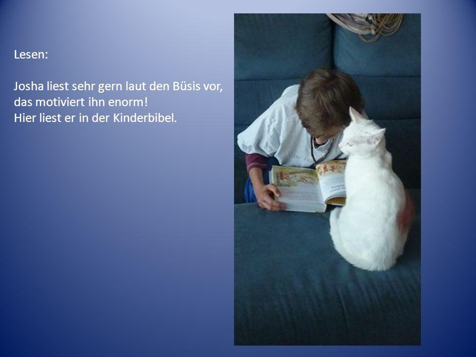 Lesen: Josha liest sehr gern laut den Büsis vor, das motiviert ihn enorm! Hier liest er in der Kinderbibel.