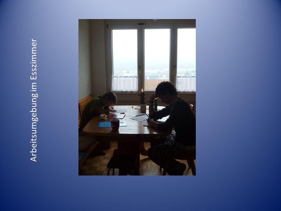 Gut 1 (www.gut1.de) ein tolles, motivierendes Rechtschreibelernprogramm