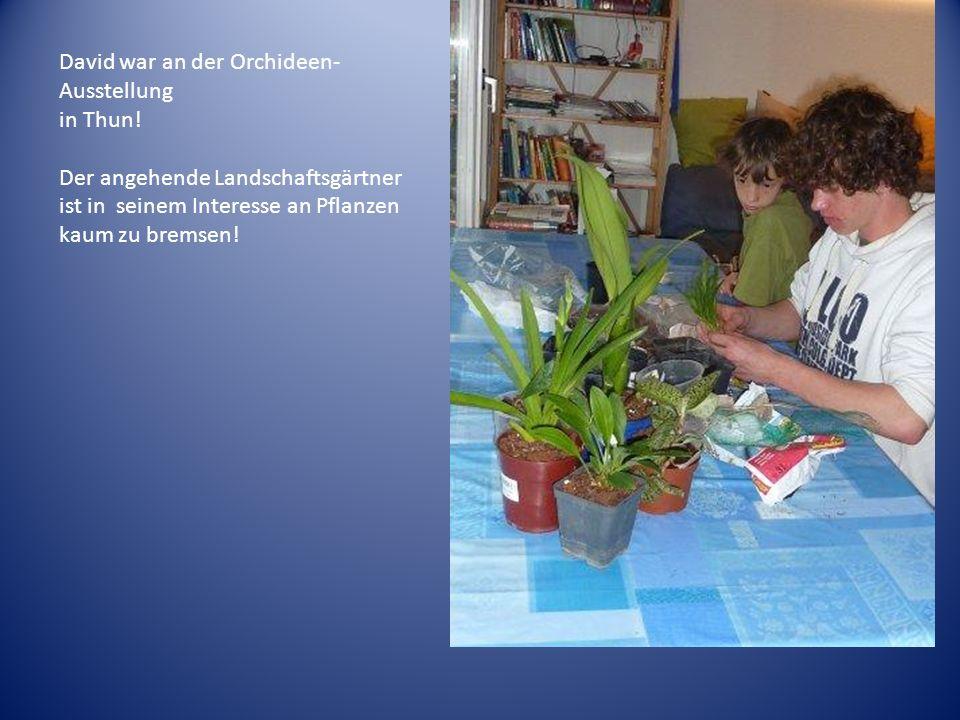 David war an der Orchideen- Ausstellung in Thun! Der angehende Landschaftsgärtner ist in seinem Interesse an Pflanzen kaum zu bremsen!
