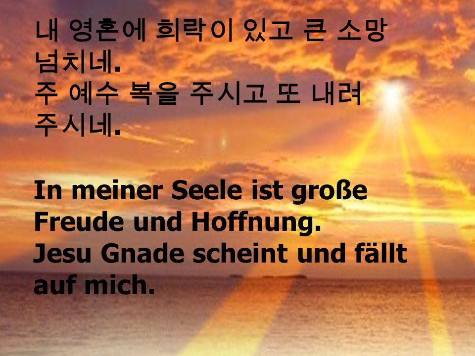 . In meiner Seele ist große Freude und Hoffnung. Jesu Gnade scheint und fällt auf mich.