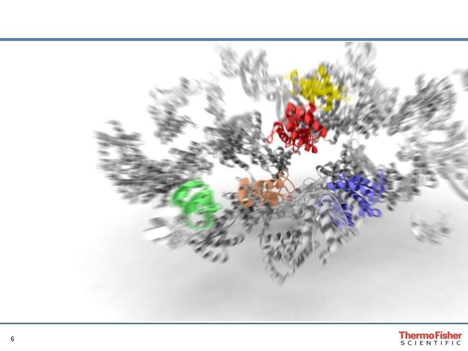 17 Gliederung 1 Grundlagen der Molekularen Allergiediagnostik 2Darstellung der klinischen Relevanz Insektengiftallergie Nahrungsmittelallergie Pollenallergie 3 Umsetzung im klinischen Alltag & ISAC Allergie-Chip 4 Zusammenfassung