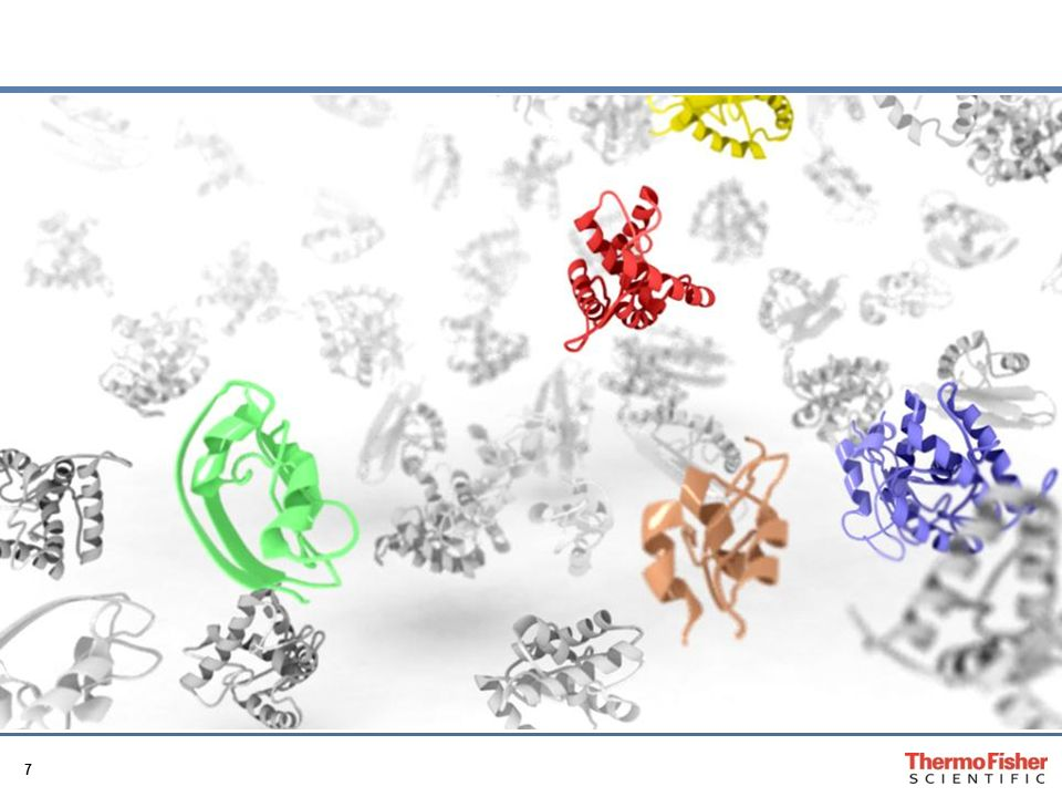 28 Location of Antigen on Cetuximab Ro307 α-Gal (Galaktose-α-1,3-Galaktose) Alpha-Gal