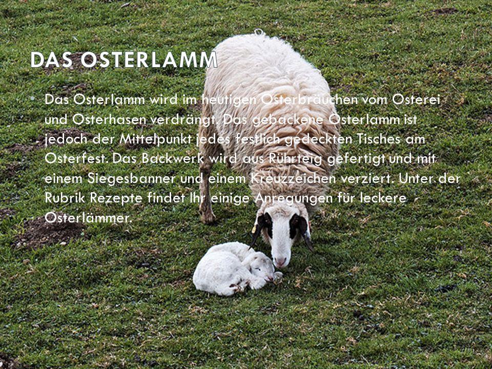 Das Osterlamm wird im heutigen Osterbräuchen vom Osterei und Osterhasen verdrängt. Das gebackene Osterlamm ist jedoch der Mittelpunkt jedes festlich g