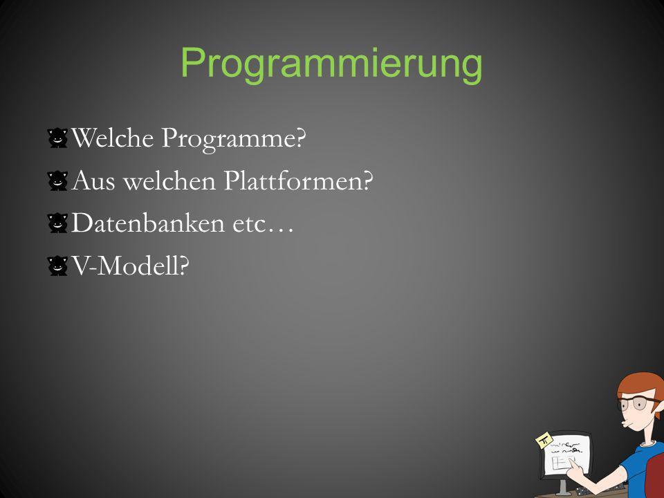 Programmierung Welche Programme? Aus welchen Plattformen? Datenbanken etc… V-Modell?