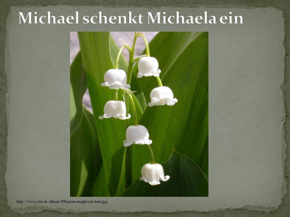 http://www.natur-server.de/Bilder/MZ/003/mz00201-Sonnenblume.jpg