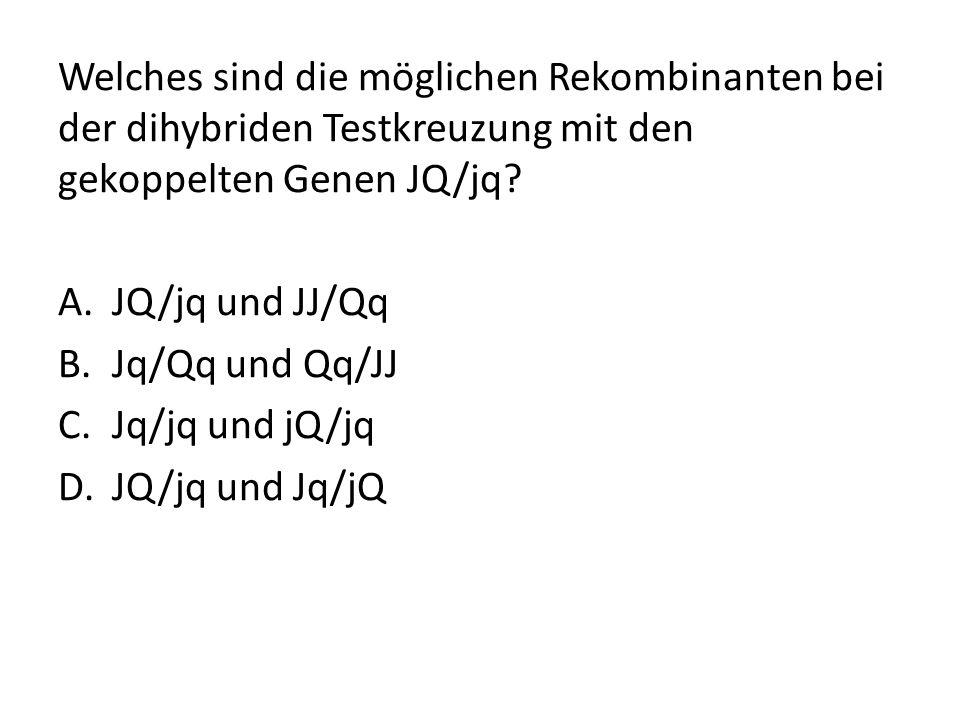 Welches sind die möglichen Rekombinanten bei der dihybriden Testkreuzung mit den gekoppelten Genen JQ/jq? A.JQ/jq und JJ/Qq B.Jq/Qq und Qq/JJ C.Jq/jq