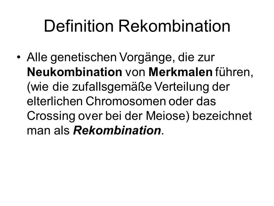 Definition Rekombination Alle genetischen Vorgänge, die zur Neukombination von Merkmalen führen, (wie die zufallsgemäße Verteilung der elterlichen Chr