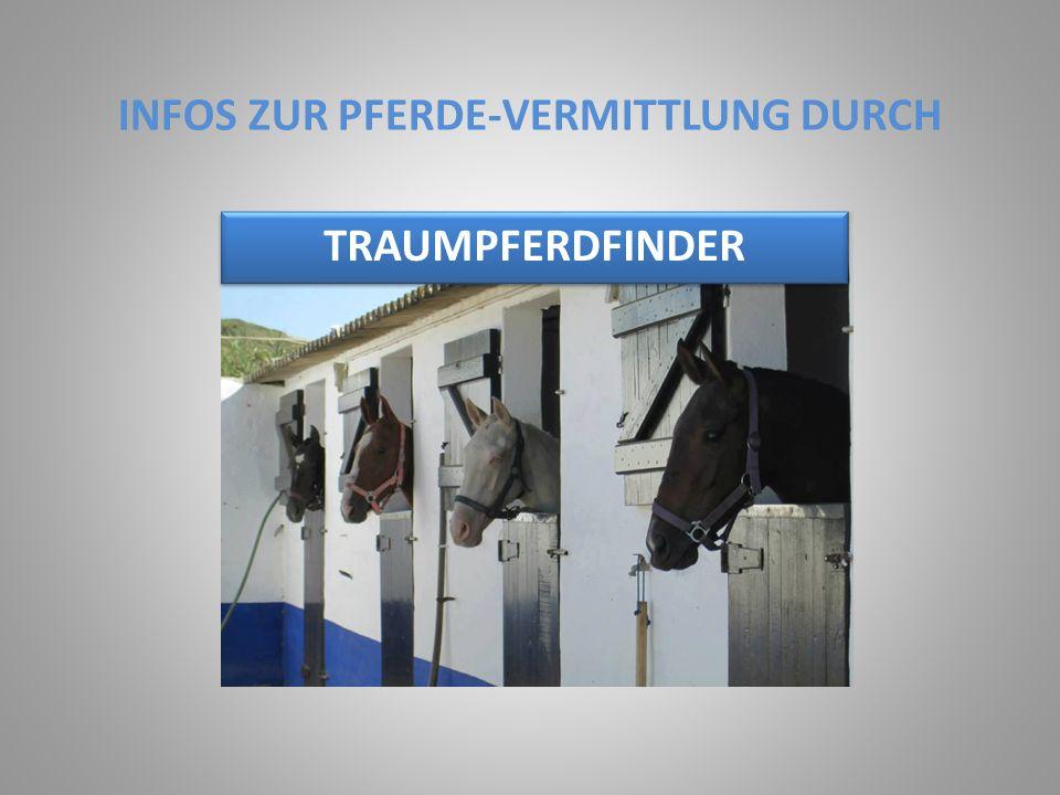 INFOS ZUR PFERDE-VERMITTLUNG DURCH TRAUMPFERDFINDER