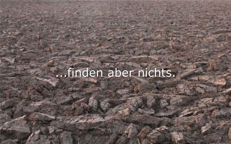 ...finden aber nichts.