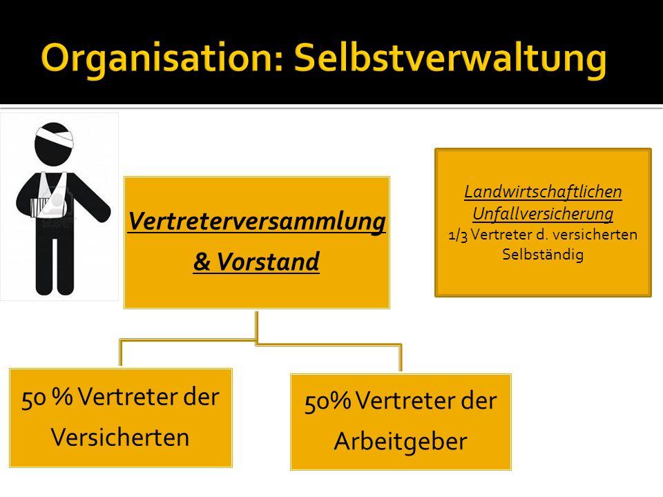 Vertreterversammlung & Vorstand 50 % Vertreter der Versicherten 50% Vertreter der Arbeitgeber Landwirtschaftlichen Unfallversicherung 1/3 Vertreter d.