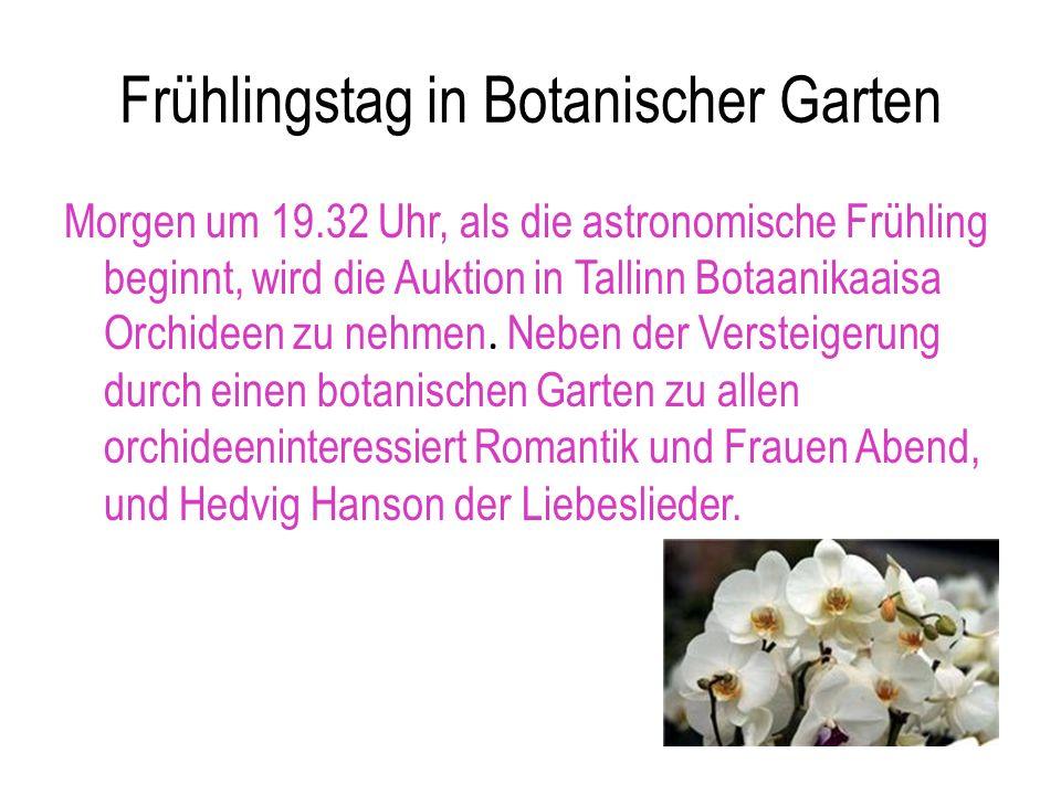 Frühlingstag in Botanischer Garten Morgen um 19.32 Uhr, als die astronomische Frühling beginnt, wird die Auktion in Tallinn Botaanikaaisa Orchideen zu nehmen.