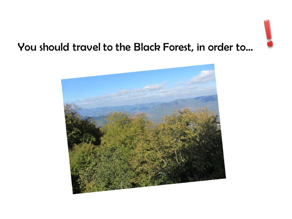 You should travel to the Black Forest, in order to…