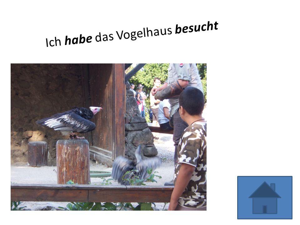 Ich habe das Vogelhaus besucht