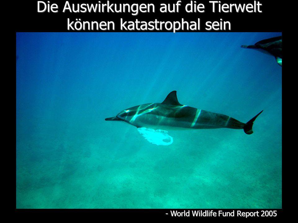 Die Auswirkungen auf die Tierwelt können katastrophal sein - World Wildlife Fund Report 2005