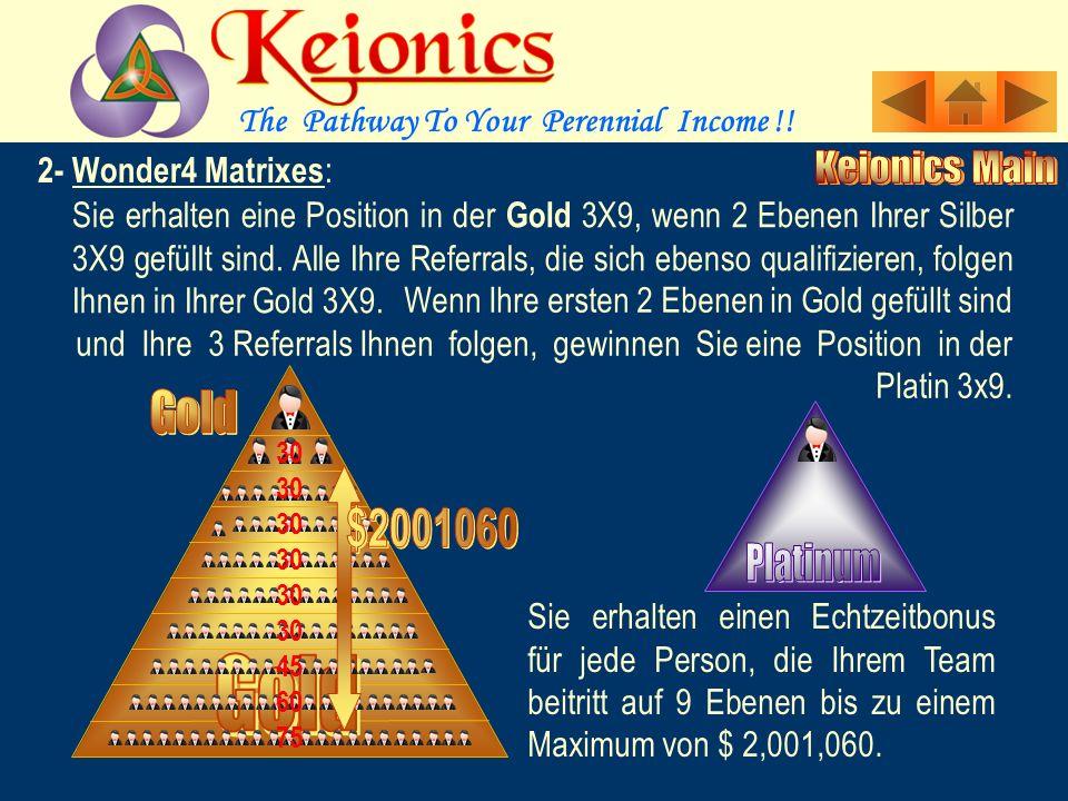 Sie erhalten eine Position in der Silber 3X9, wenn 2 Ebenen Ihrer Bronze 3X9 gefüllt sind. Alle Ihre Referrals, die sich ebenso qualifizieren, folgen