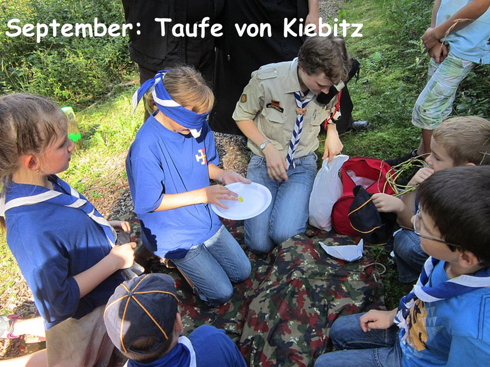 September: Taufe von Kiebitz
