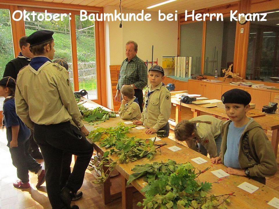 Oktober: Baumkunde bei Herrn Kranz